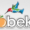 Robeks Coupons for Juicy Deals and Discounts